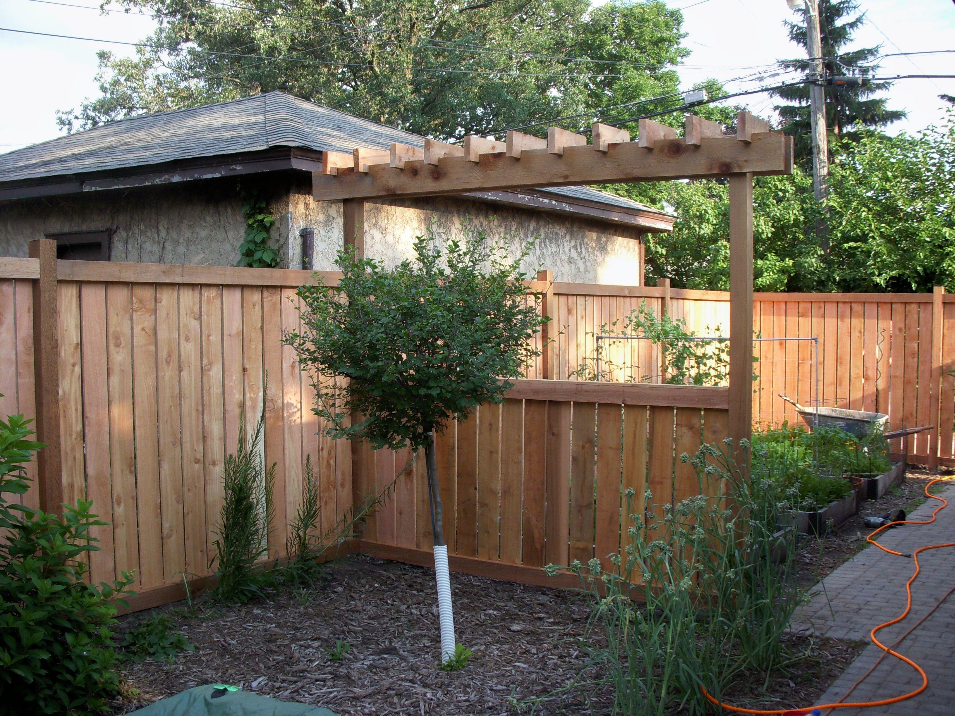 Custom arbor craftsman style fence garage yard for Craftsman style trellis