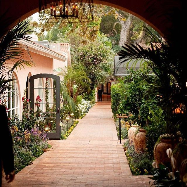 An Afternoon Stroll Surrounded By Nature At Hotel Bel Air