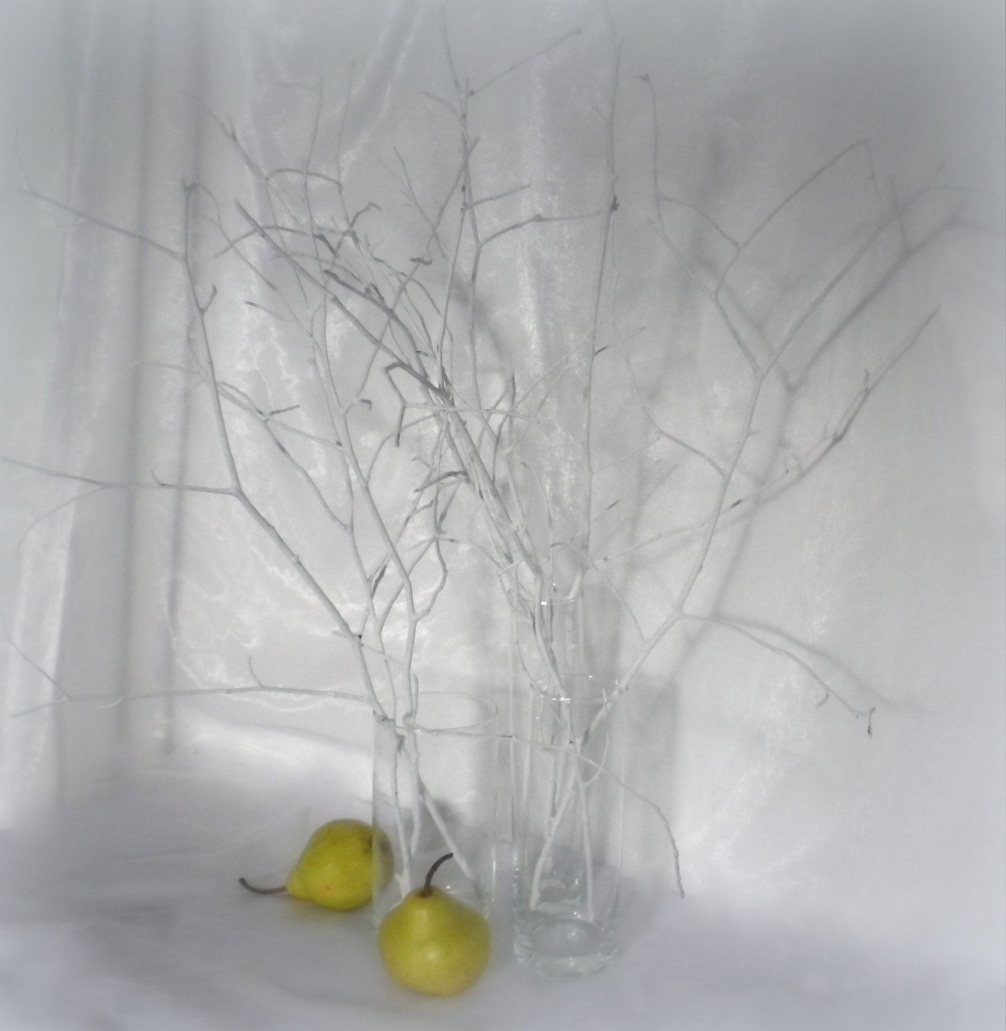 White Tree Branches Scandinavian Home Decor Woodland Decor Painted Branches Wedding Centerpiece Natural Decorative Twigs Vase Filler Painted Branches White Tree Branches Tree Branch Centerpieces