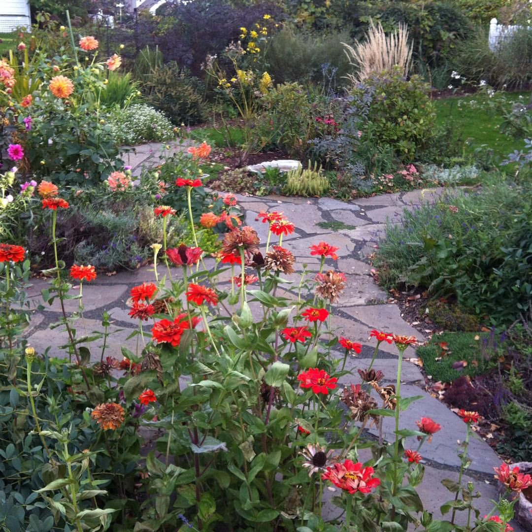 One last look at the autumn garden before the frost  OMG! As I was typing that it started to flurry!!!