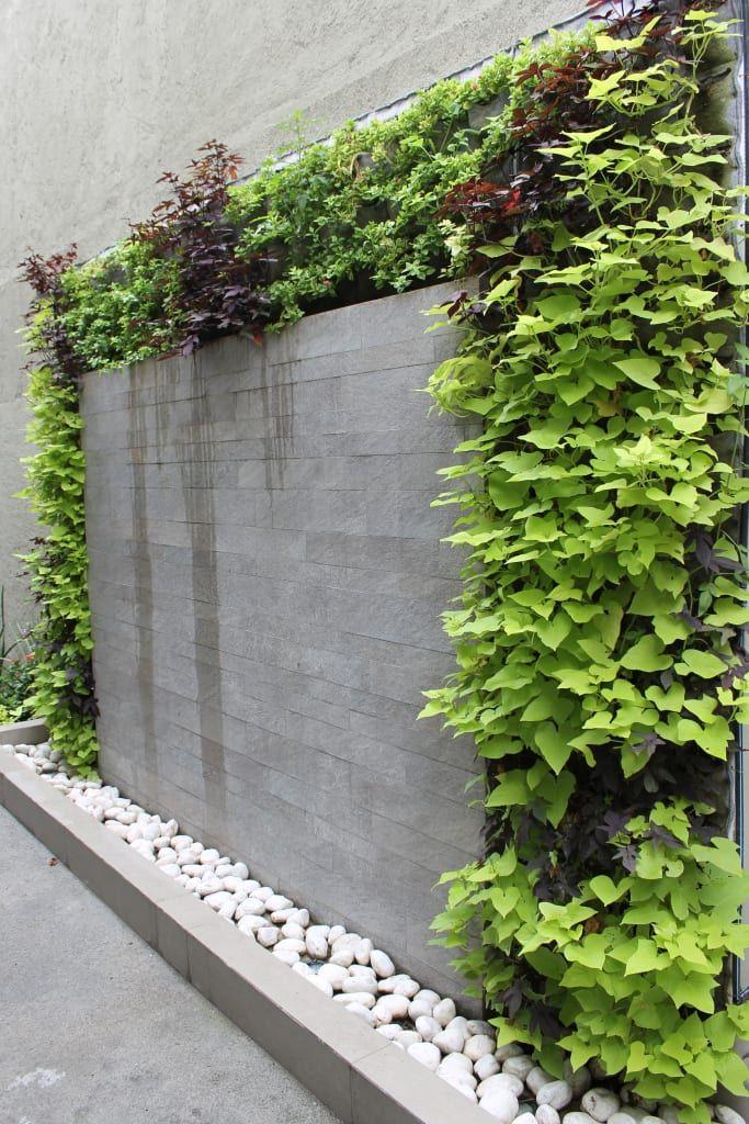 Jardines verticales casas modernas de huichol moderno en - Jardines exteriores de casas modernas ...