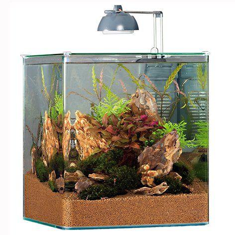 nano akvarium - Hledat Googlem