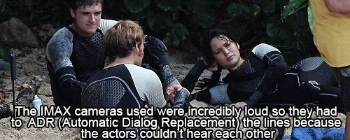 ★CATCHING FIRE FACT ツ