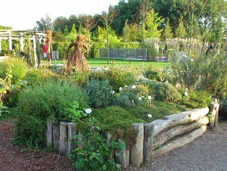 Hochbeet Erdbeeren Pinterest Hochbetten Hochbeet Und Garten