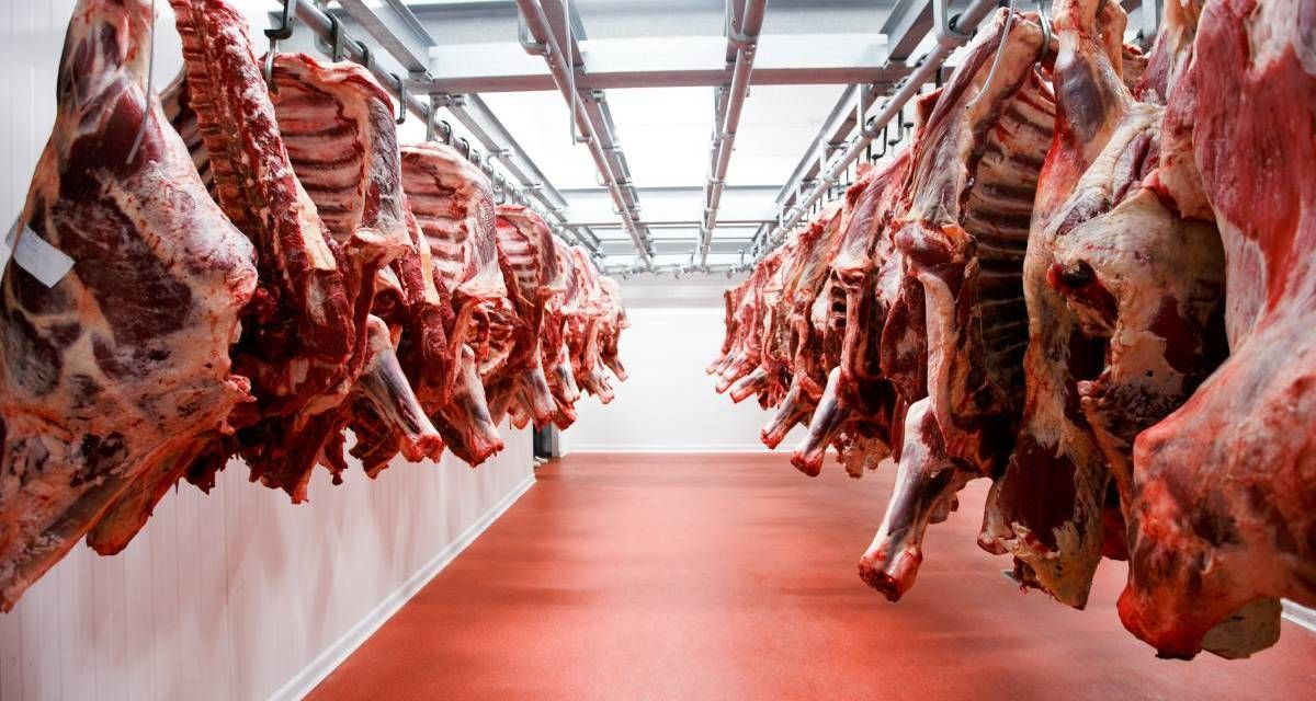 Will meat consumption stop worldwide due to fear of