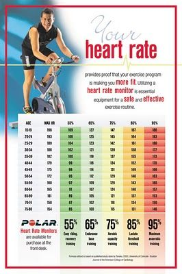 Interval Training Heart Rate Chart  Decoding Heart Rate Zones