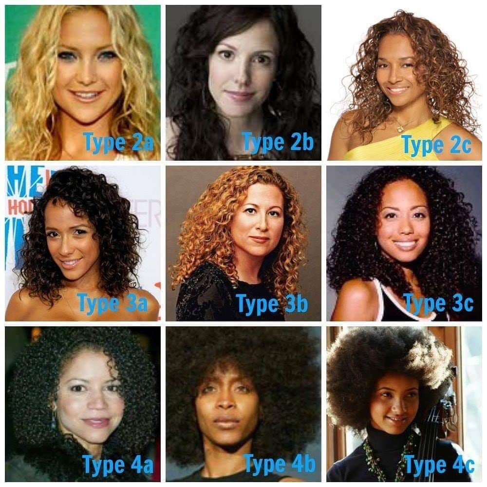 Natural Hair Types Curly Hair Styles Natural Hair Types Hair Type Chart