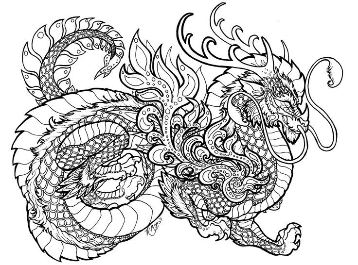 Dragon Coloring Pages For Adults Printable Dragon Coloring Page