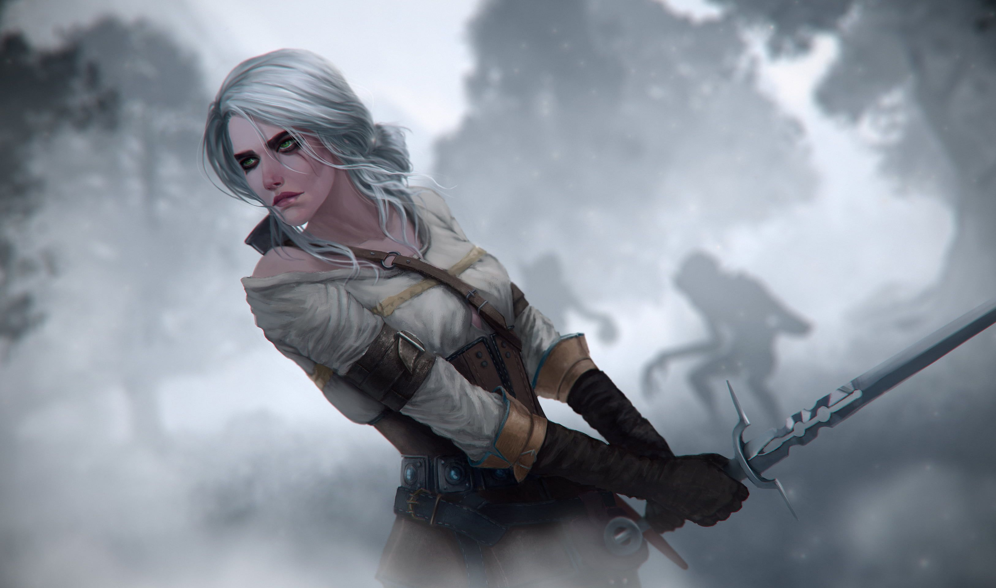 Pin By Rabbit Xd On Witcher The Witcher Ciri Witcher Ciri Ciri witcher 3 hd games artwork