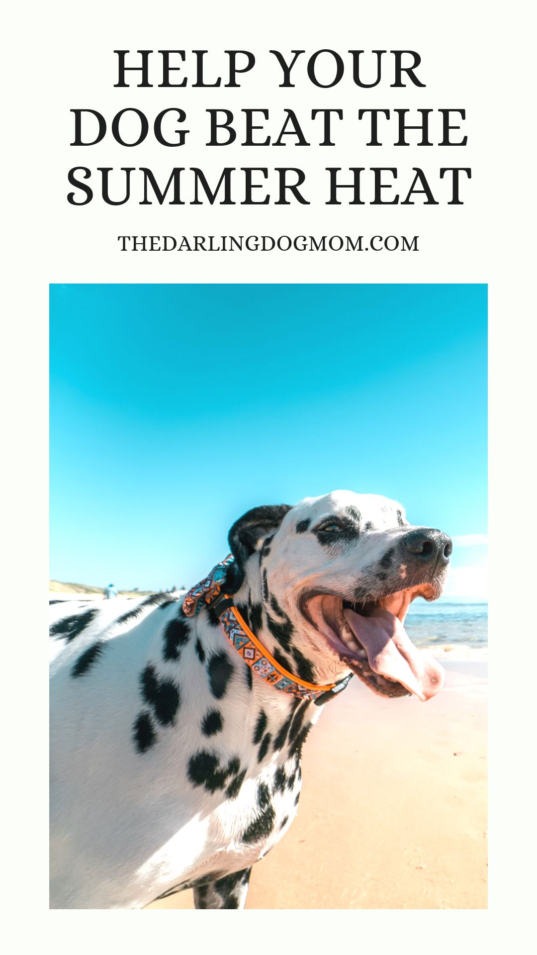 Check out my nine ways to help your dog stay cool and safe
