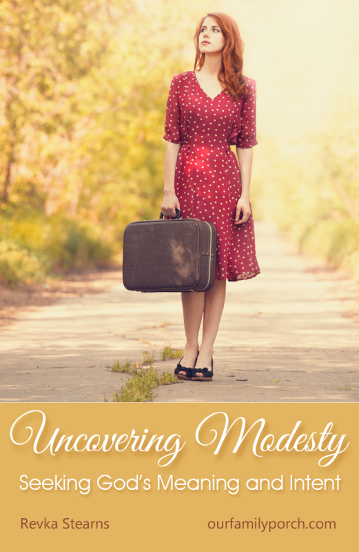 Uncovering Modesty: Laying the Foundation - Our Family Porch