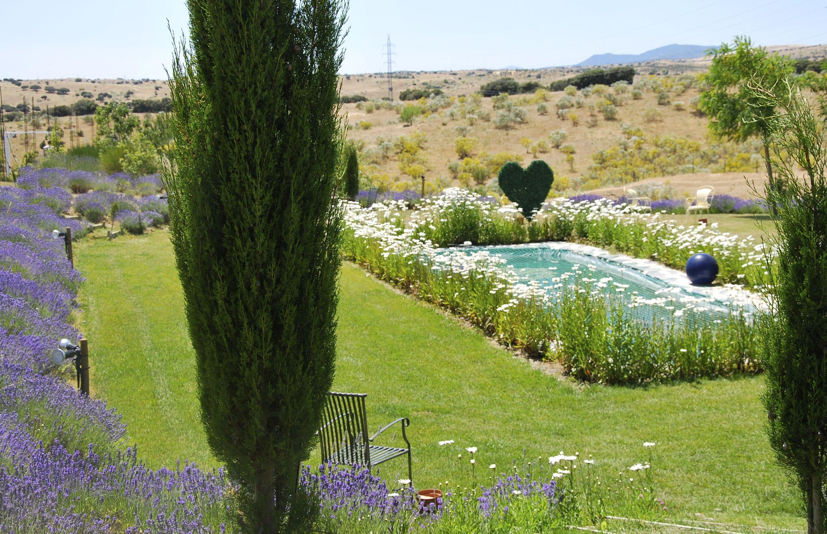 El lugar ideal para la celebracion del coctail a lado del estanque en www.aalcachucho.com