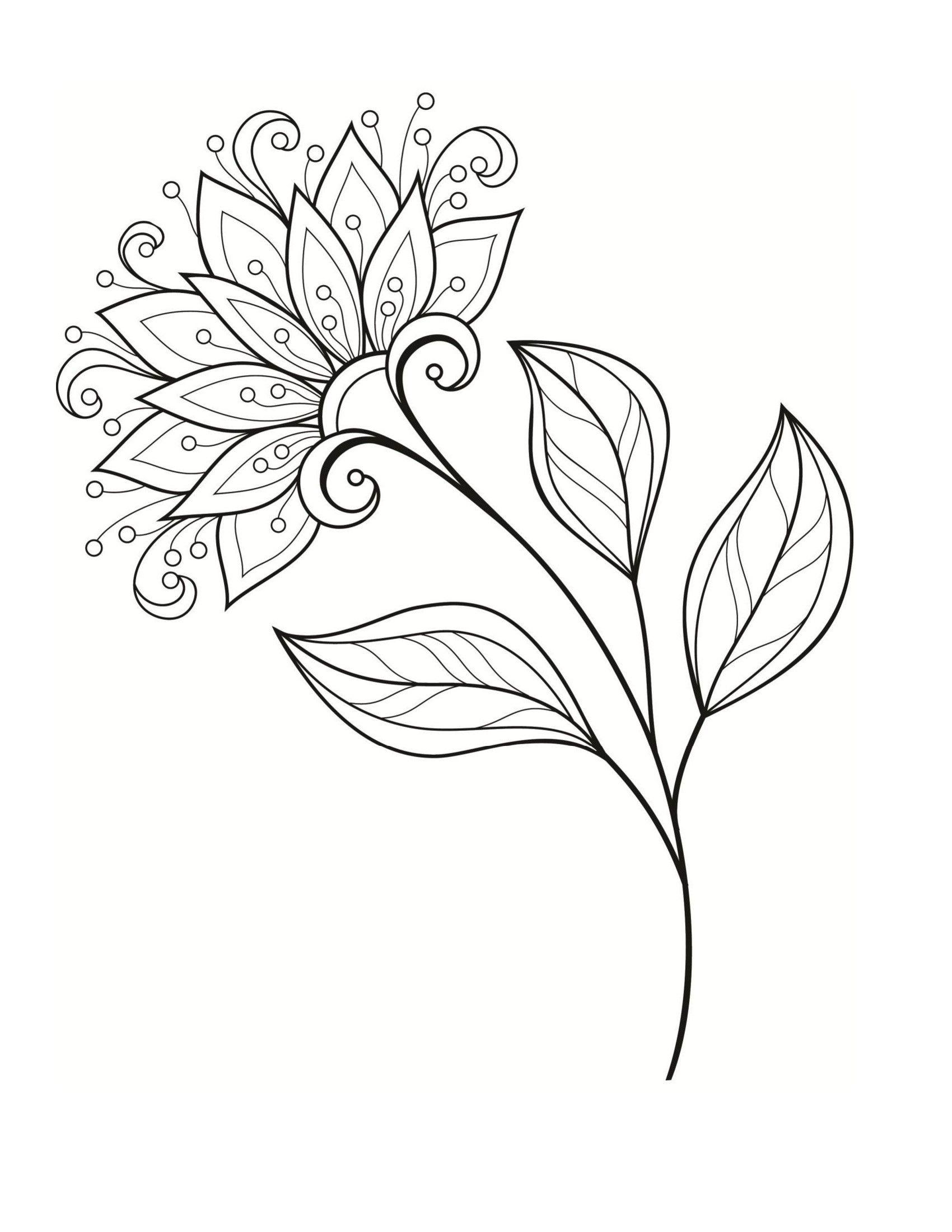 Цветок георгина - Цветы | Раскраски, Цветочные раскраски ...
