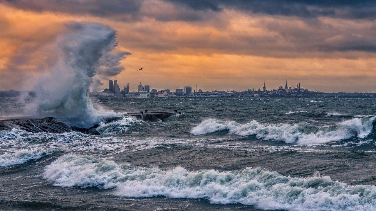 роман признались, штормовое море фотографии производим