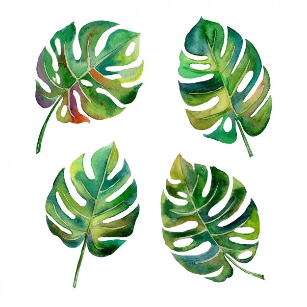 Download Watercolor Leaves Design For Free Watercolor Leaves