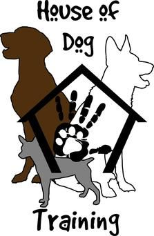 Obedience Classes For Adults And Puppies Board And Train Programs