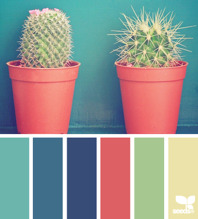 cacti color - design seeds - like the blues, and the watermelon-y color