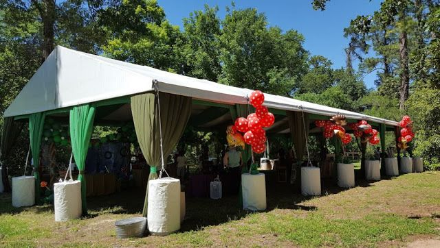 Cheap Wedding Venues In Houston Arboretum And Nature Center