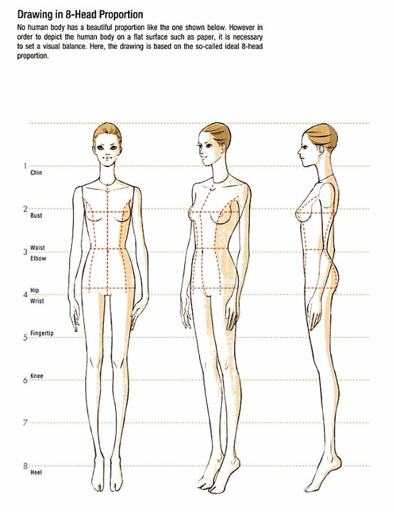 Body Drawing In 8 Head Proportion 1 With Images Fashion