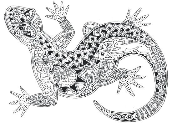 Image Result For Cool Coloring Pages Lizard Animal Coloring Pages Zentangle Animals Coloring Pages