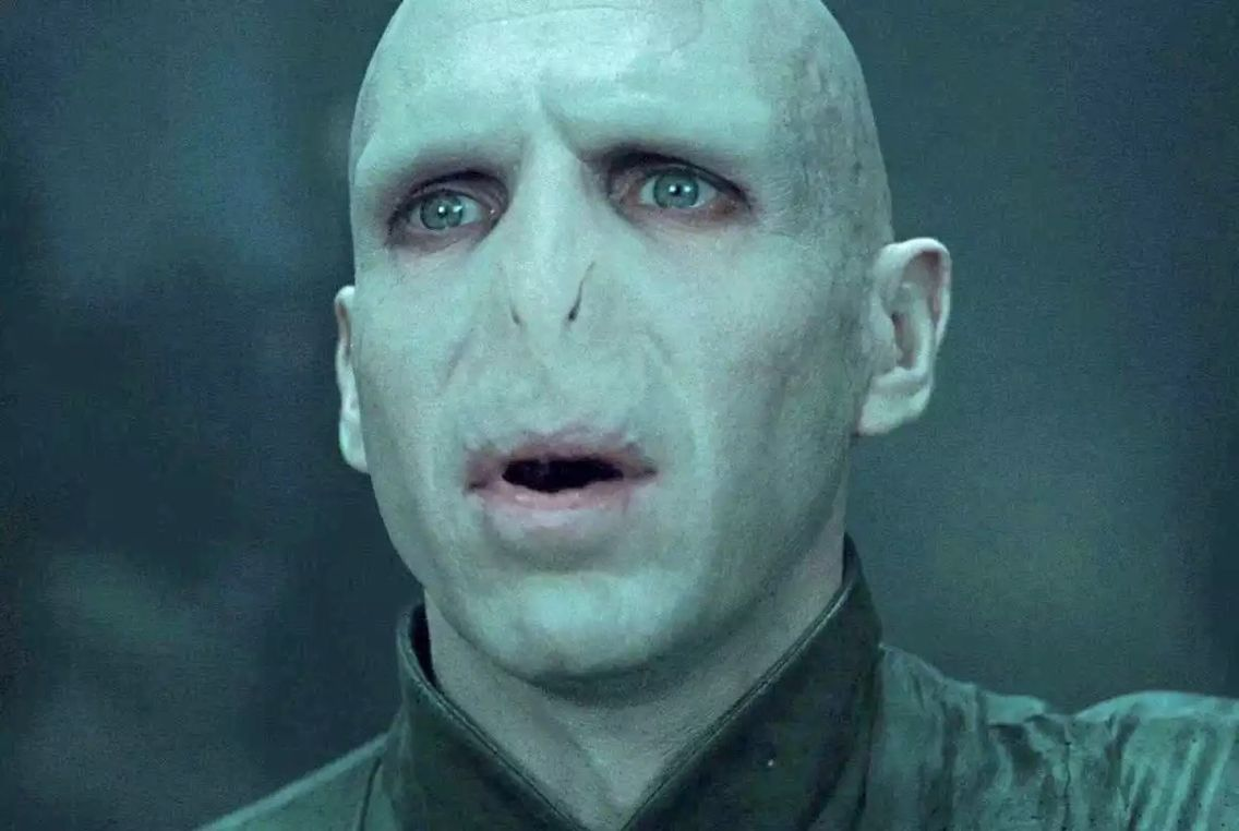 Voldemort - Harry Potter. The evil wizard who killed Harry's parents and ultimately fell at the hands… | Harry potter characters, Voldemort, Harry potter voldemort