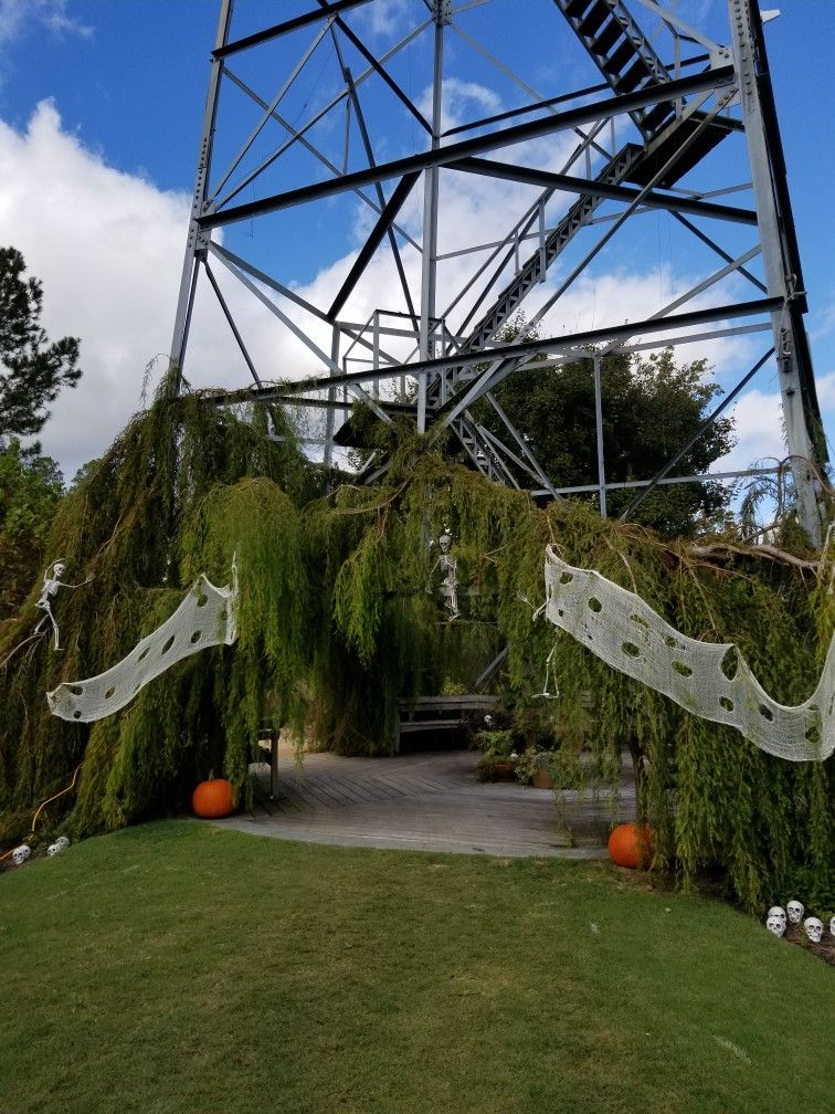 Bootanical South Carolina Family Friendly Event Family Friendly Activities