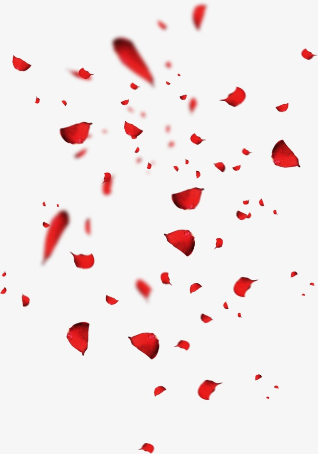 Red Petals Rose Petal Falling Petals Scattered Petals Png Transparent Clipart Image And Psd File For Free Download Rose Petals Falling Red Petals Flower Png Images