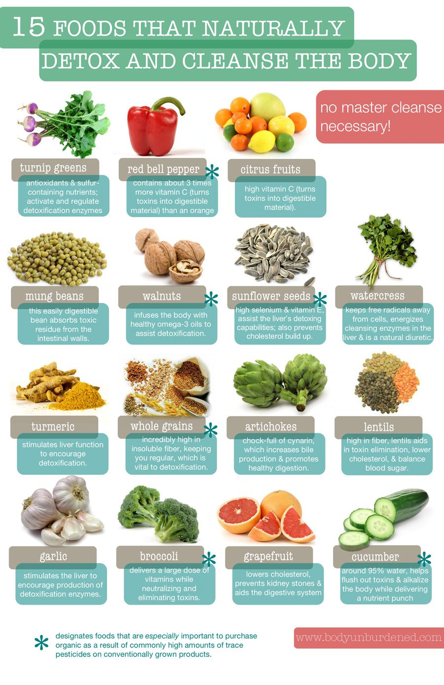 15 Foods That Naturally Detox And Cleanse Your Body Infographic http://www.elephantjournal.com/author/lynn-hasselberger/