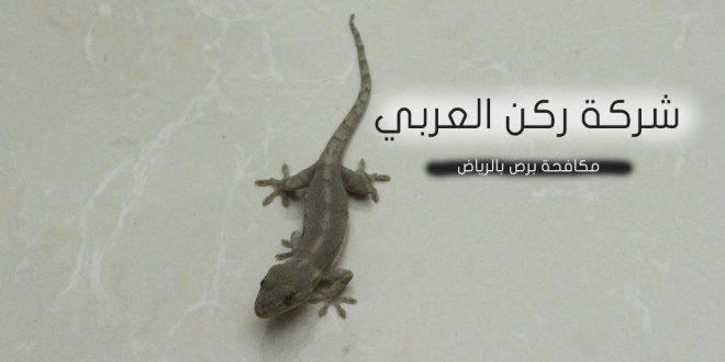شركة مكافحة برص فى الرياض نقوم في شركة مكافحة برص بالرياض برش المطابخ والحمامات لتضمن لكم التخلص التام من كافة الابراص حيث نستخدم الأمصال العالمية المج Animals