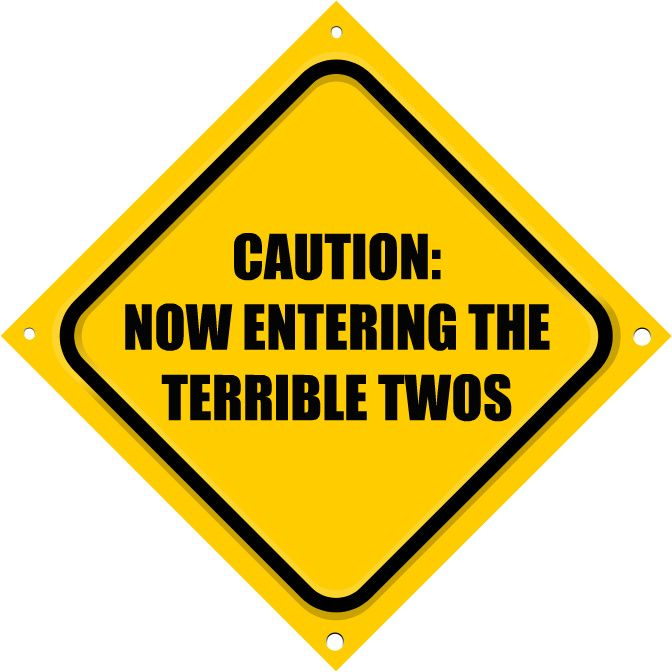 Terrible Twos Road Sign -- For Construction Themed Party