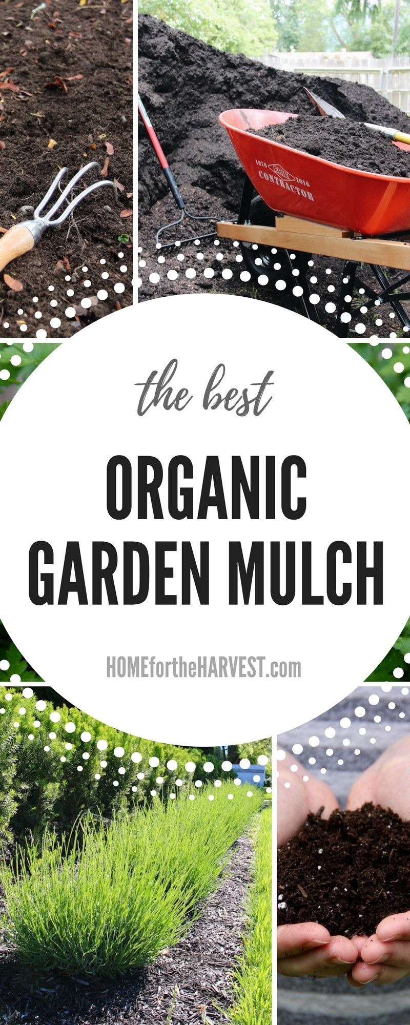 3 Easy Organic Mulch Options for a Thriving Garden | Organic mulch ...