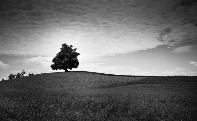 27 black and white landscape images digital photography school