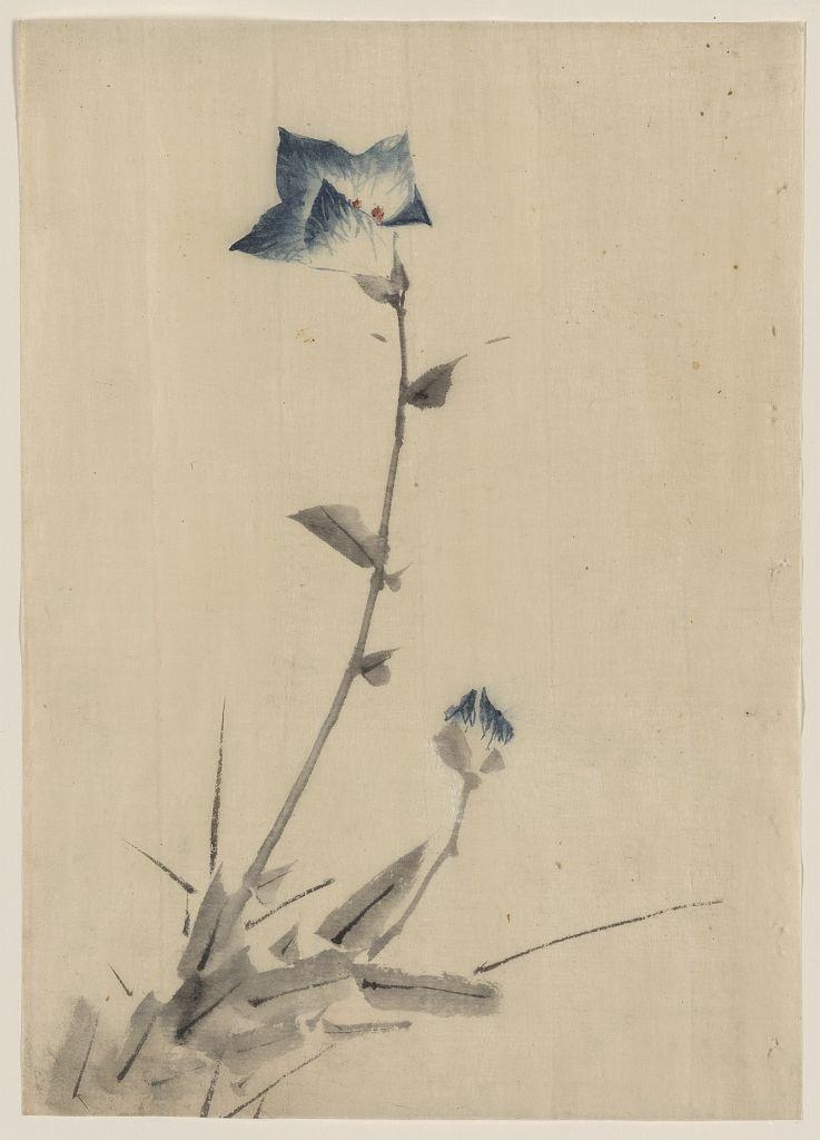 sumi-no-neko: 葛飾 北斎 Katsushika Hokusai (1760... - Wabi-sabi 佗 寂