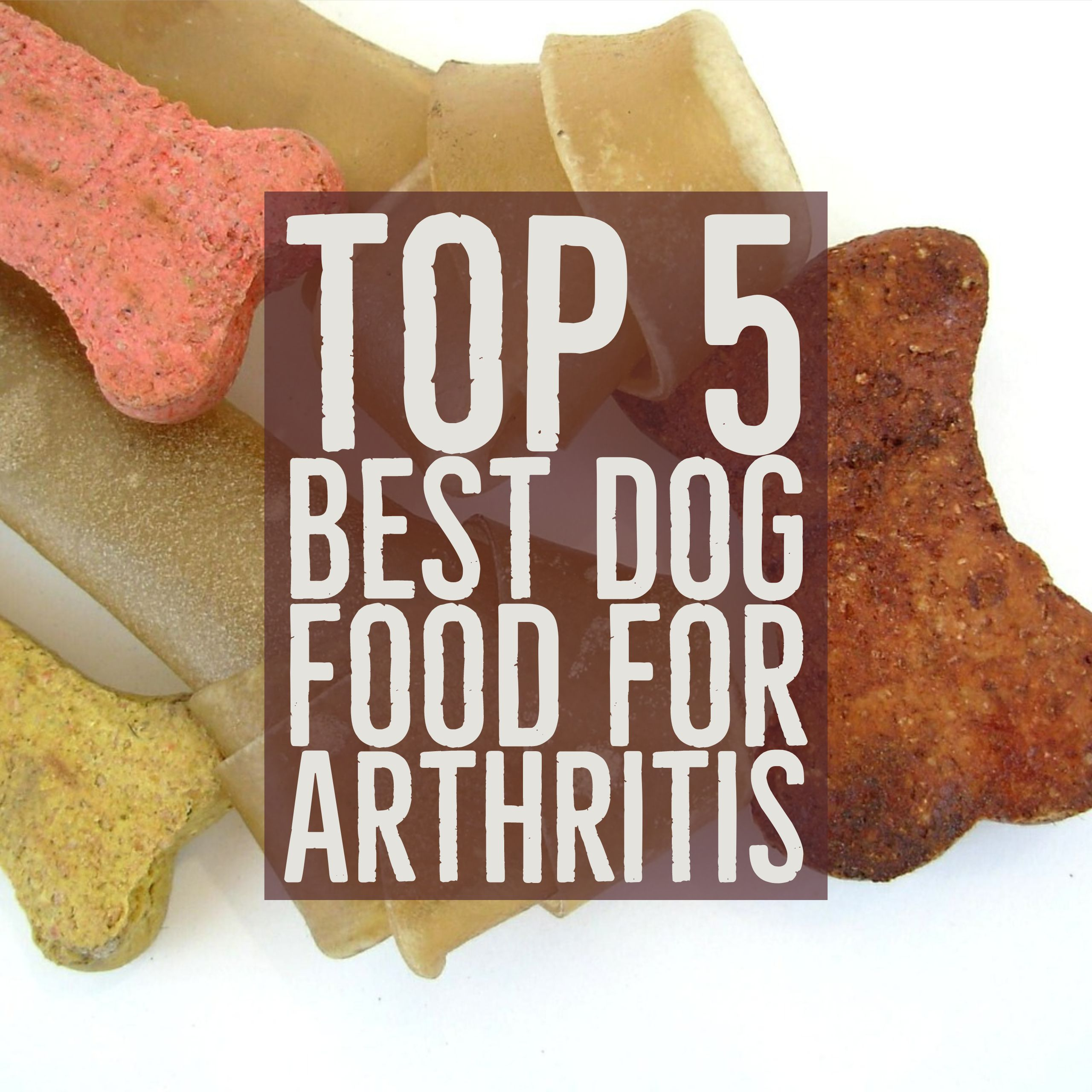 Top 5 Best Dog Food For Arthritis Dogs Dogfood Dogcare