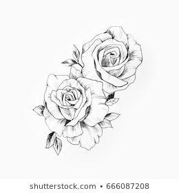 Illustrazione stock 525956179 a tema Schizzo bianco e nero ...
