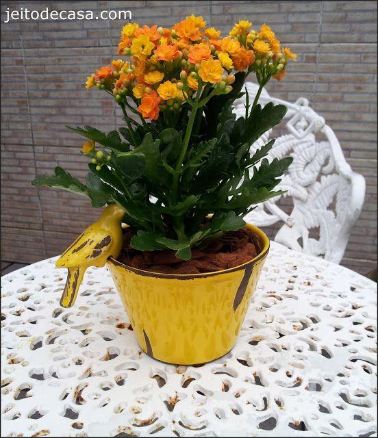 Novas flores em casa... - Jeito de Casa