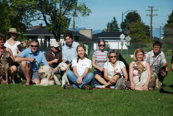 Zen Dog Training Located In Vancouver Bc Zen Dog Puppy