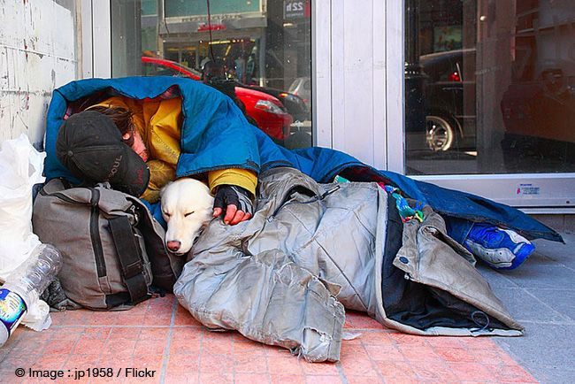 The unconditional love between dogs and their owners l Photo jp1958 l #homeless #dogs #love
