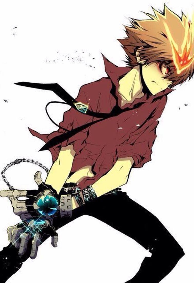 Tsuna Katekyo Hitman Reborn Anime Estilo Anime Animes Manga