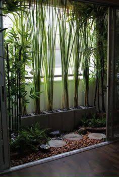 resultado de imagen para jardin pequeo con bambu y piedras