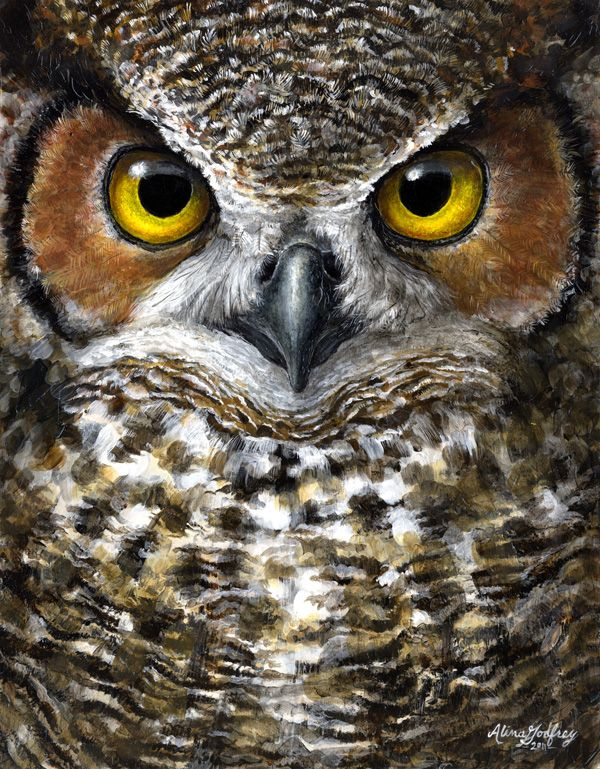 great horned owl painting c kestrel creative owls pinte