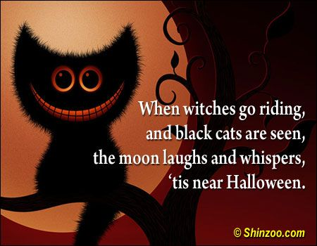 Funny Halloween Quotes Cute Captions For. Halloween Instagram Captions Cat  Cartoonview Co