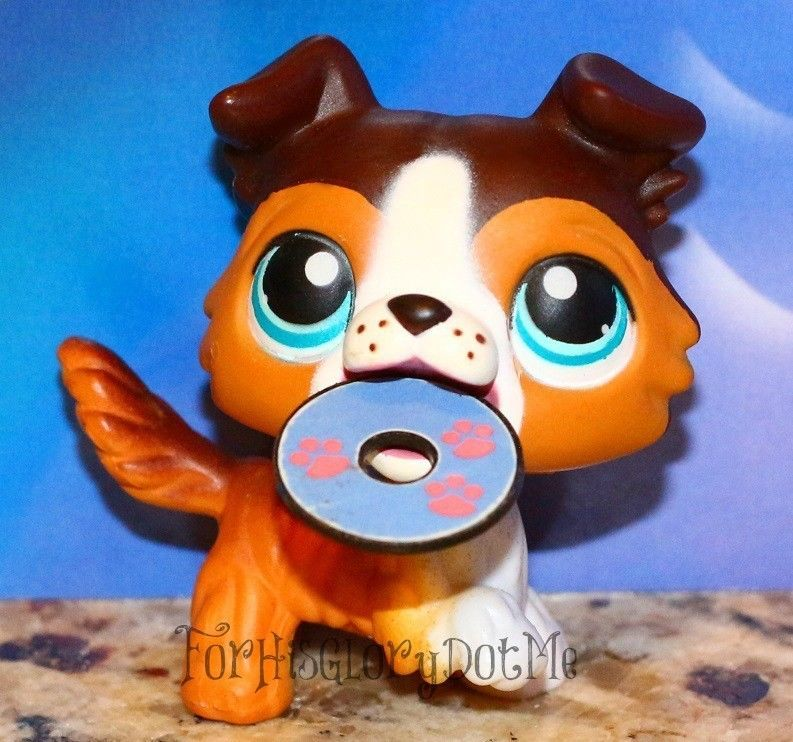 Littlest Pet Shop 237 Open Mouth Brown Caramel Border Collie Puppy Dog Accessory Little Pet Shop Toys Littlest Pet Shop Lps Littlest Pet Shop