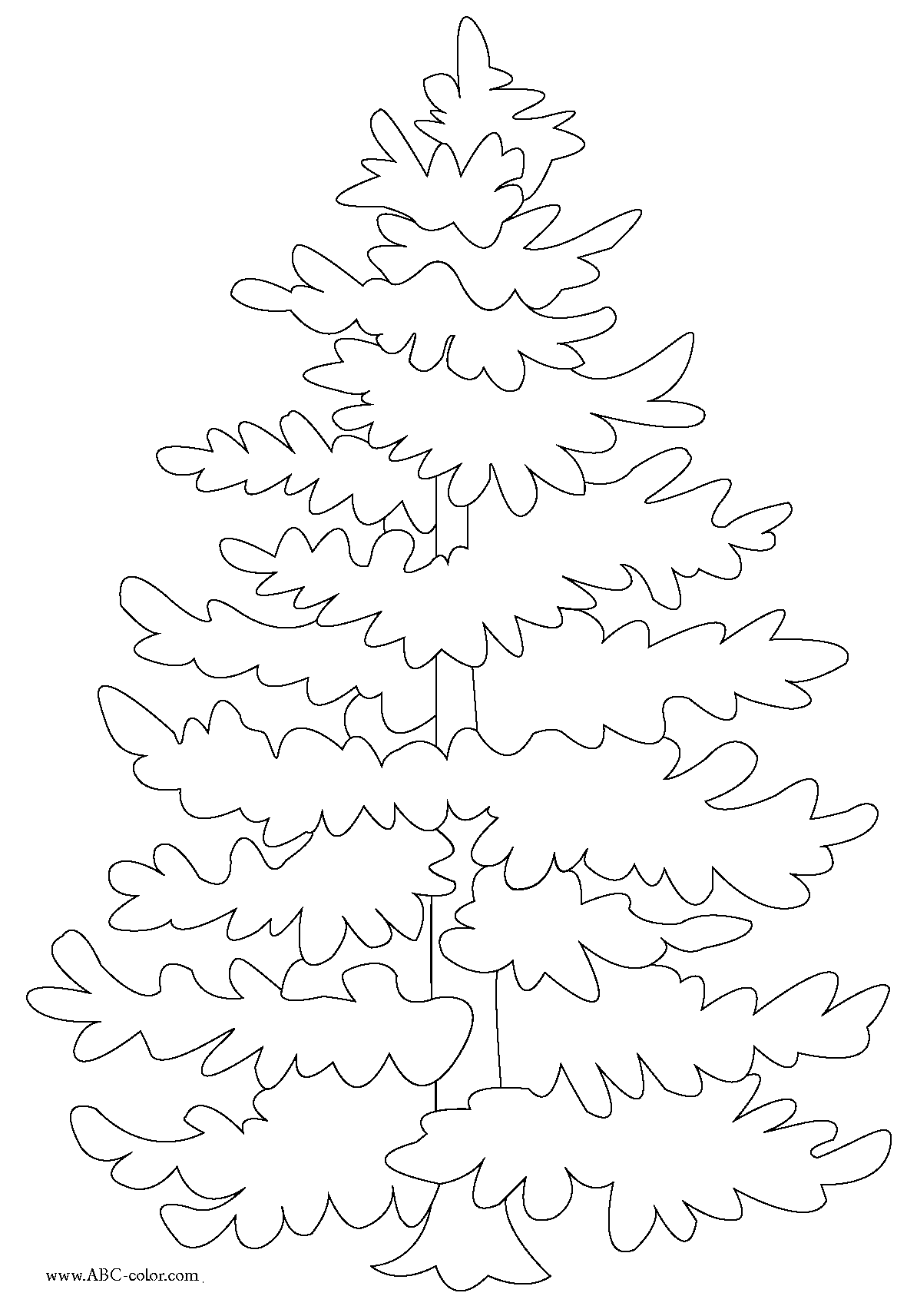 Evergreen Tree Coloring Page Tree Coloring Page Coloring Pages Christmas Drawing