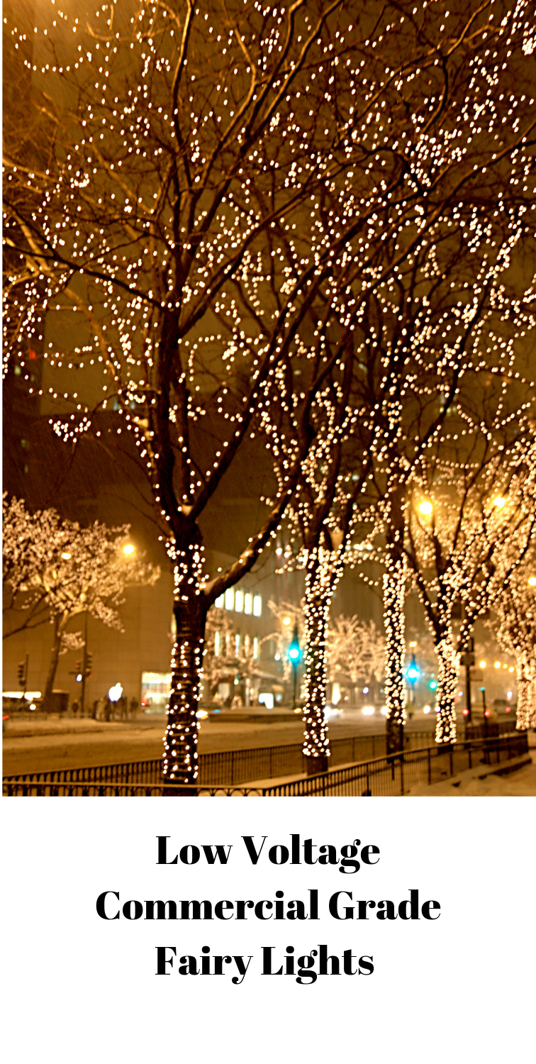 Fairy Lights For Harsh Outdoor Conditions Outdoor Fairy Lights Christmas Lights Outdoor Trees Outdoor Christmas Lights