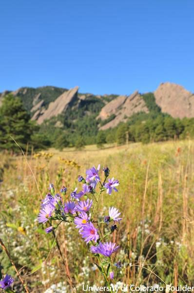 Best place to hike in Boulder! Chautauqua Park, Boulder.