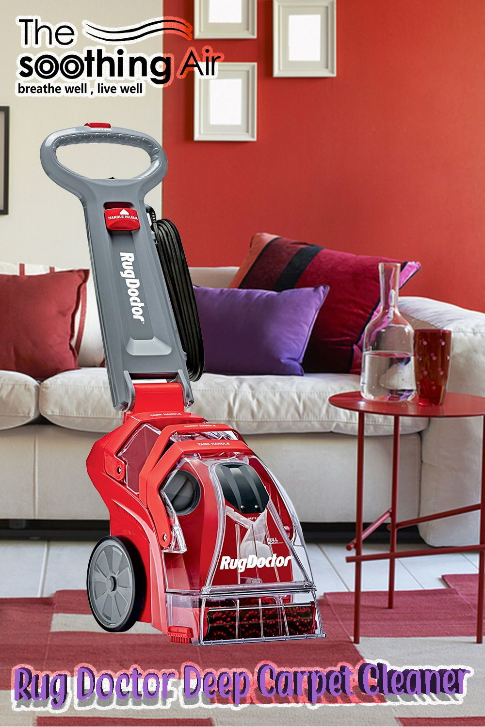 Top 10 Carpet Cleaners