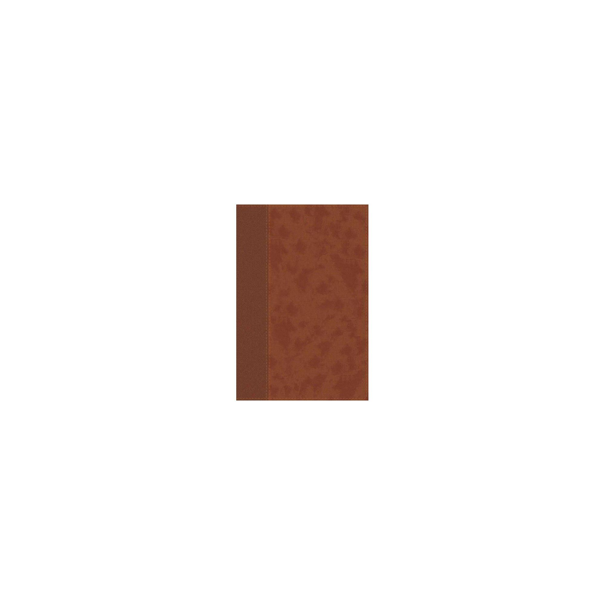 Niv Personal Size Bible Large Print Leathersoft Brown Red