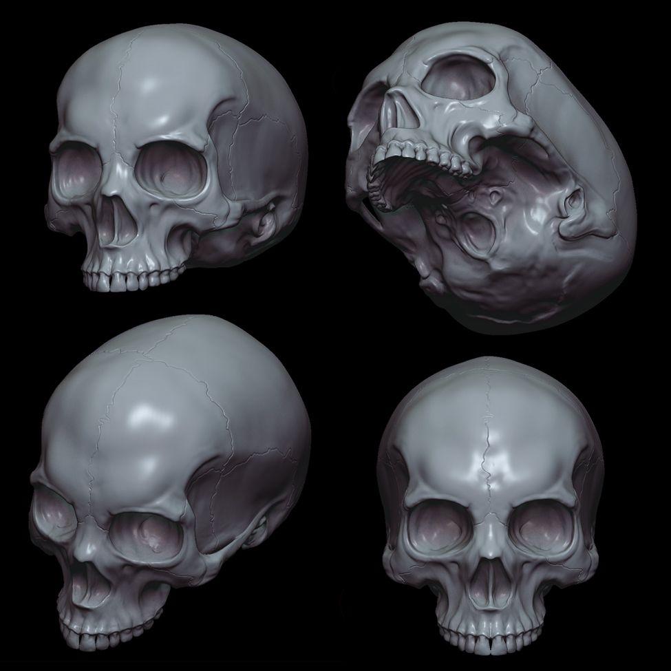 картинки черепа со всех сторон ловле летом