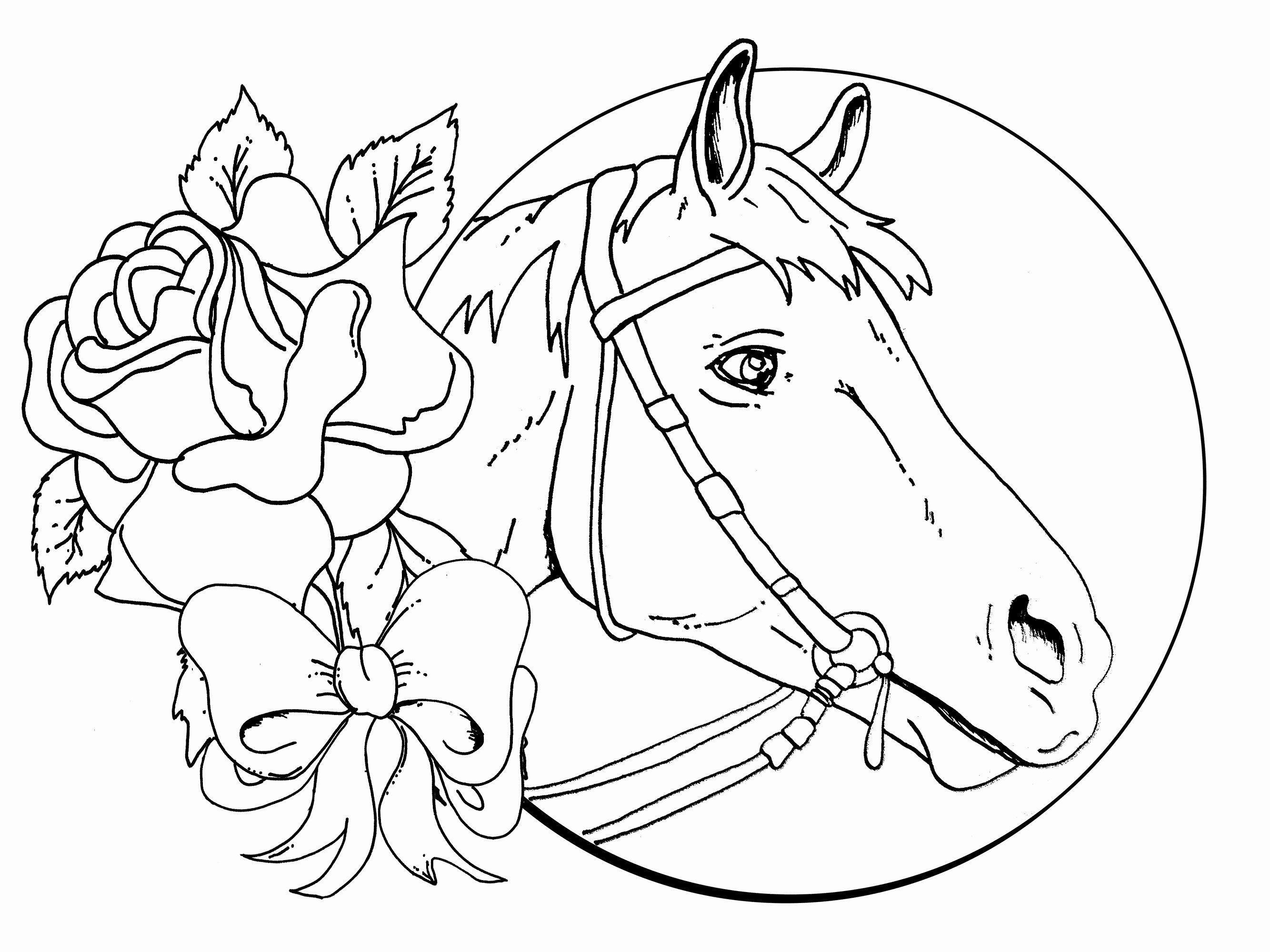 - Printable Horse Coloring Page In 2020 (With Images) Rose